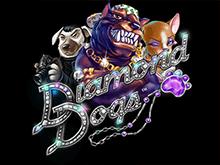 Diamond Dogs - играть на деньги