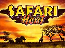 Safari Heat - играть на деньги