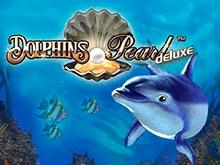 В игровом клубе онлайн аппарат Dolphin's Pearl Deluxe