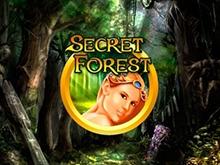 В онлайн казино автоматы Secret Forest