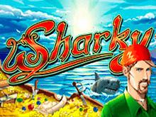 Играть на деньги в автоматы Sharky