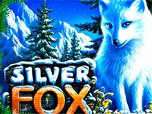 Играть на деньги в аппараты Silver Fox