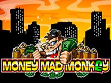 Онлайн казино предлагает играть на деньги в слот Money Mad Monkey