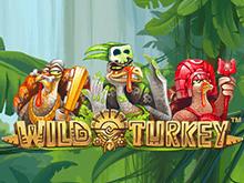 Виртуальный аппарат Wild Turkey в казино 777