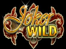 Рискните и выиграйте в слоте Joker Wild