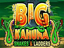 Big Kahuna Snakes And Ladders от Microgaming - игровые автоматы с крупными выплатами в каждом раунде